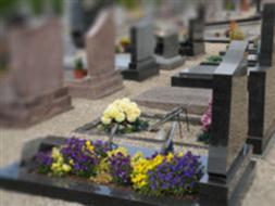 Cmentarz komunalny w Smolcu
