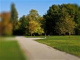 Park w dzielnicy Rusinowa w Wałbrzychu