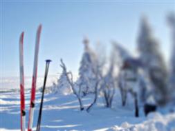 Międzyuczelniane Centrum Sportów Zimowych i Lotniczych Bezmiechowa-Paszowa