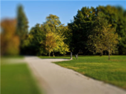 Promenada wzdłuż jeziora Kórnickiego